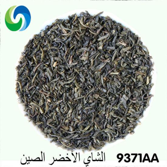 China Green Tea 9371 EL Taj Quality with EU Standard Dry Tea