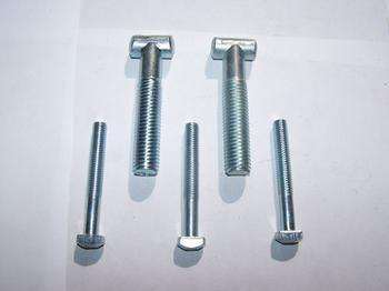 S. S. /Plain/Plated T Head Bolt / Bolt with Hex Nut and Washer pictures & photos