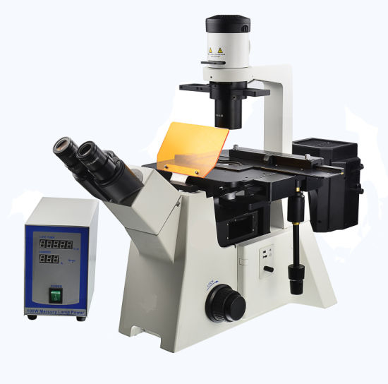 Trinocular Inverted Fluorescence Microscope pictures & photos