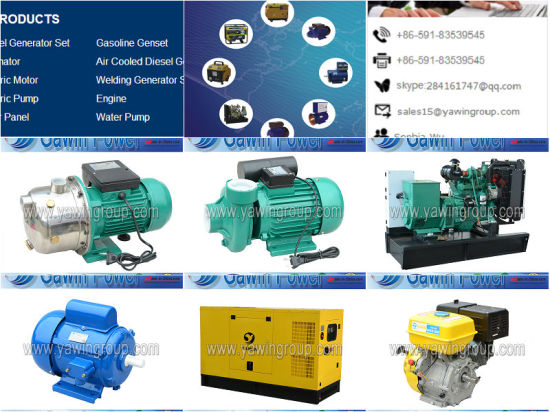 St Series 15kw Single-Phase a. C. Synchronous Generator Power of Small Capacity pictures & photos