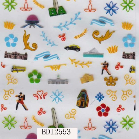 Top Seller Hydrographics Printing Films for Cars and Shake Bottles (BDI2553)