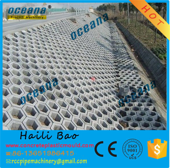 Cement Concrete Road Paver, Plastic Driveway Paver Moulds pictures & photos