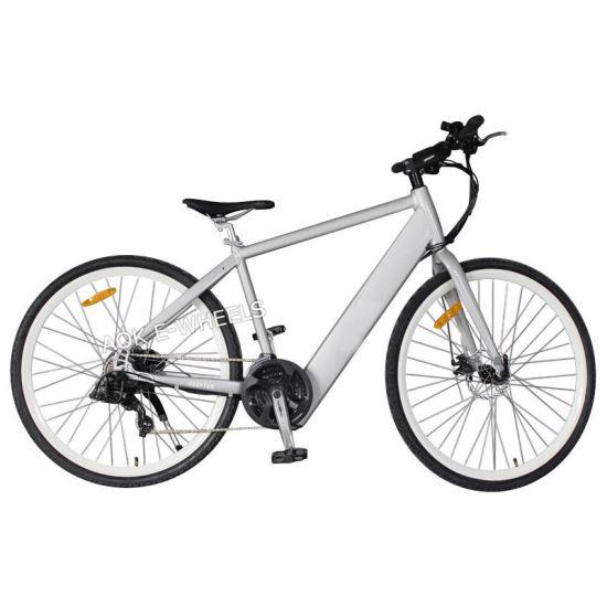 250W36V Mountain Lithium Battery E-Bike with Shimano 21-Speed Deraileur (TDE-035D)