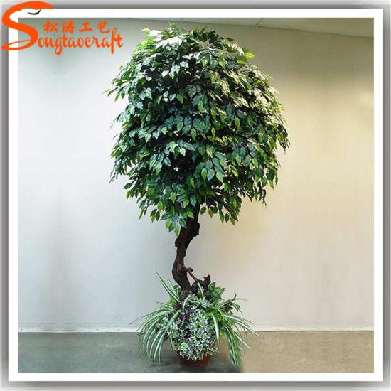 Best Sale Artificial Bonsai Ficus Microcarpa