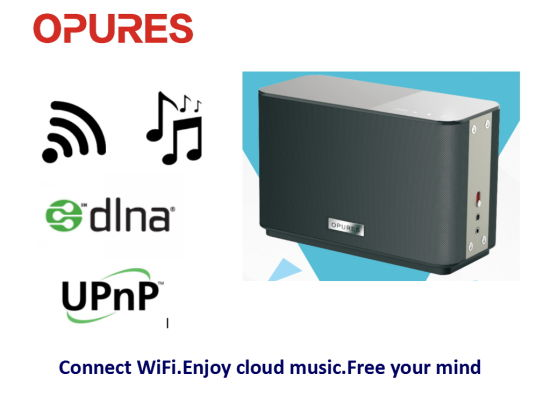 Wireless WiFi Acoustics PA Sound System Digital Music PRO Audio