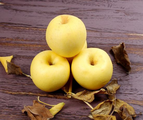 Delicious Fresh Golden Apple Supplier pictures & photos