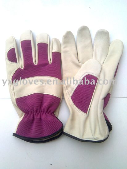 Garden Glove-Working Glove-Leather Glove-Weight Lifting Glove pictures & photos