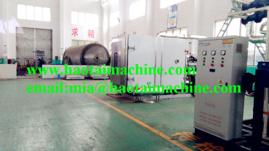 300kg Per Batch Vacuum Freeze Dryer for Apples pictures & photos