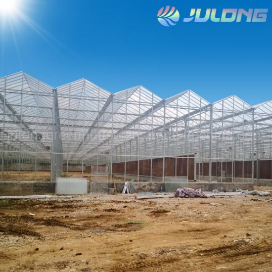 Polycarbonate and Galss Cover Commercial Greenhouse for Agricultural Equipment