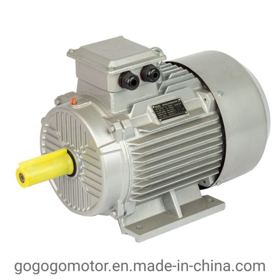 Yc Series Commercial Asynchronous Induction Electric Motor