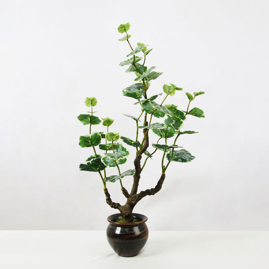 China Artificial Plant Ear Tiger Leaf Artificial Tree Small And