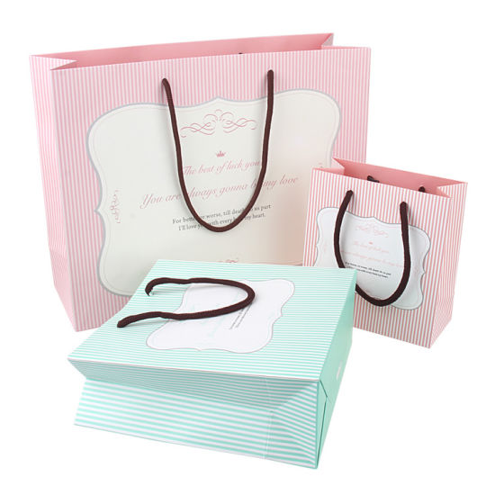 Custom Printed Paper Gift Bags/Shopping Bag