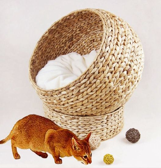 (BC-PK1002) High Quality Handmade Pet House pictures & photos