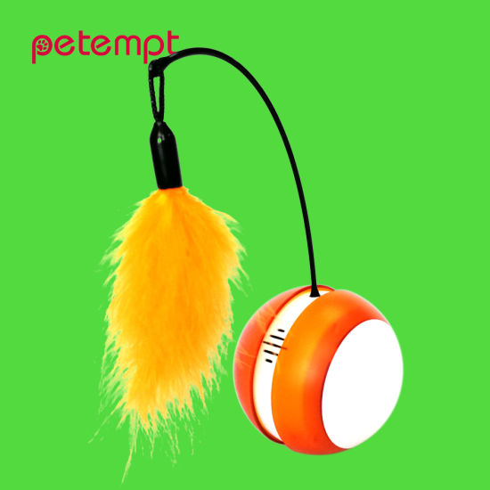 Orange Rolling Bird Sound Flash LED Tumbler Cat Ball Pet Toy pictures & photos