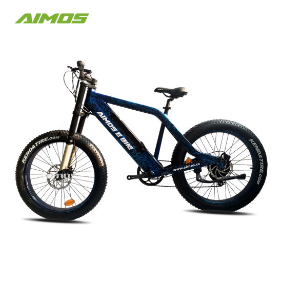 OEM Brand En15194 1000W Fat Tire Electric Mountain Electric Vehicle pictures & photos