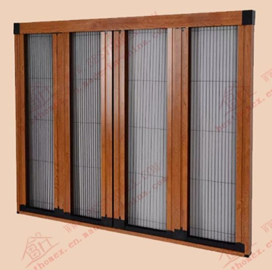 Barrier Free Caterpillar Mesh Screen Door (BHN-FD04) pictures & photos