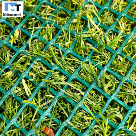 China Turf Reinforcement Mesh/Plastic Grass Protection Mesh