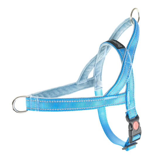 2020 New Product Whole Sale Custom Ultra Soft Lining Dual Strap Pet Dog Harness