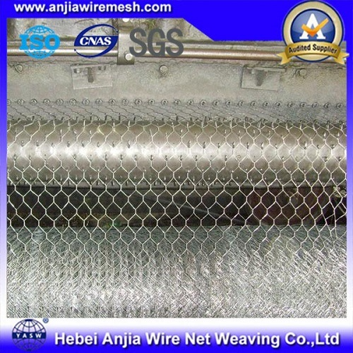 Hot Dipped Galvanized Hexagonal Wire Mesh with High Quality