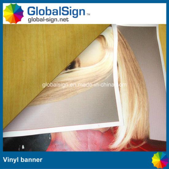 China Double Sides Digital Printed Vinyl Banners (LFG35/440
