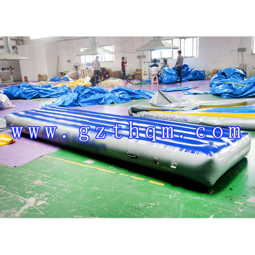 Blue PVC Air Track/Indoor Exercise Air Track pictures & photos
