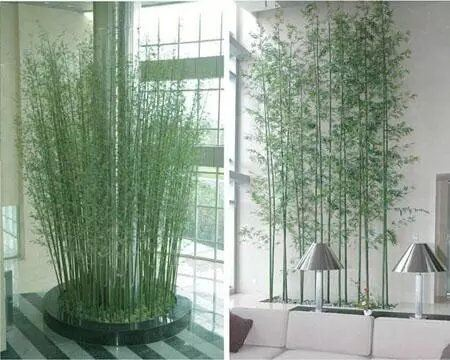 Best Selling Artificial Plants of Bamboo Gu-SL5092956 pictures & photos