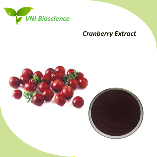 ISO Certified Natural Cranberry Extract with Anthocyanidins and Proanthocuydnins pictures & photos