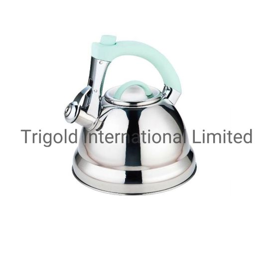 Amazon Best Seller 304 Stainless Steel Kettle Coffee Kettle Tgk2969