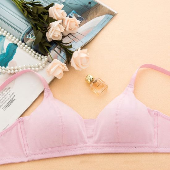 Dropshipping French Style Girls Custom Stylish Triangle Cup Breathable Wirefree Push up Cotton Bra