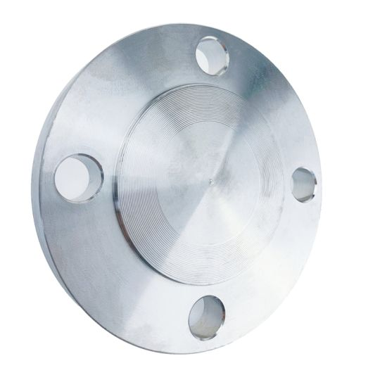 Stainless Steel Welding Pipe Fitting Manufacturer RF Blind Flange