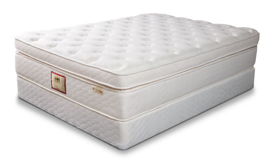 Top Quality Newst Design OEM Spinal Max Bed Mattress pictures & photos