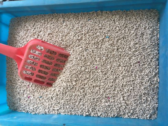 Clumping Strip Cat Litter pictures & photos
