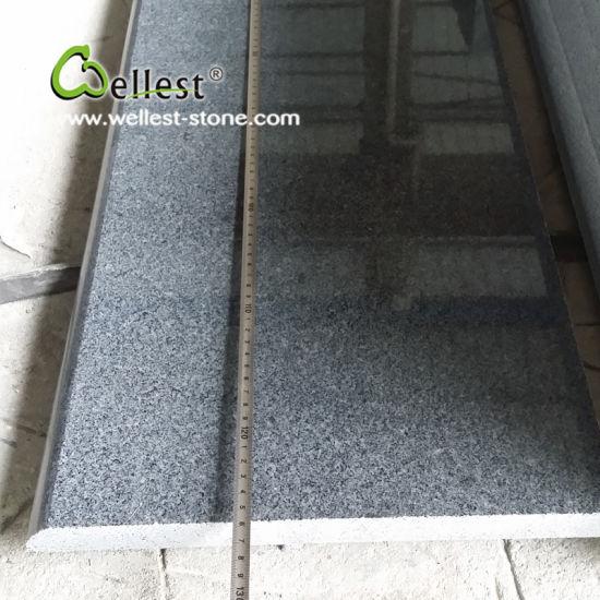 China Good Price Dark Grey Polished Granite Floor Tile China