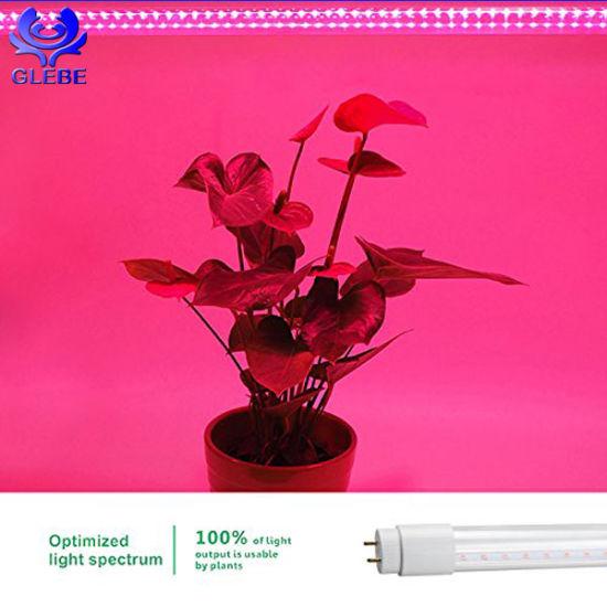 Attractive 9W 12W 18W 24W Full Spectrum T5 T8 Tube LED Grow Light