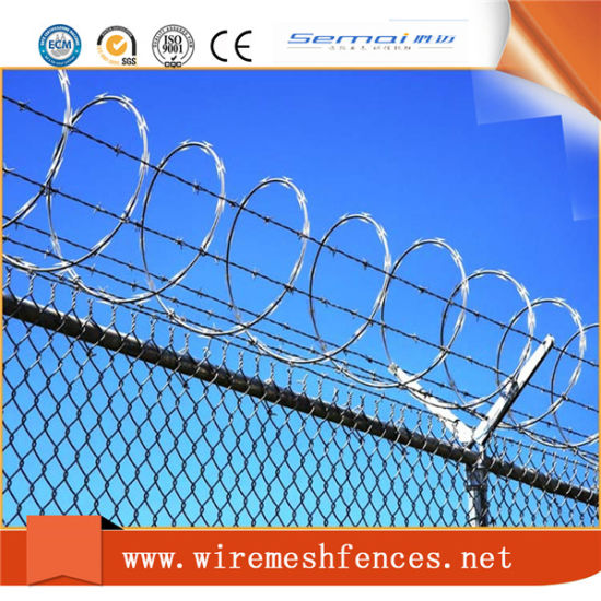 Factory Price Razor Barbed Wire Used as Wall Spike