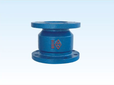 Flange Connective Straight Way Grey Cast Iron Silence Check Valve