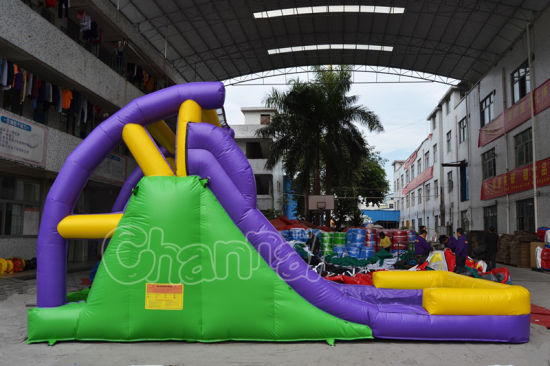 Summer Time Outdoor Inflatable Water Slide for Children pictures & photos