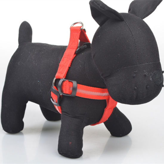 Pet Supplies Dog Accessories Rechargeable Colourful LED Light Dog Harness