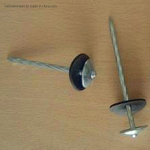 galvanized umbrella head roofing nail with washing rubber