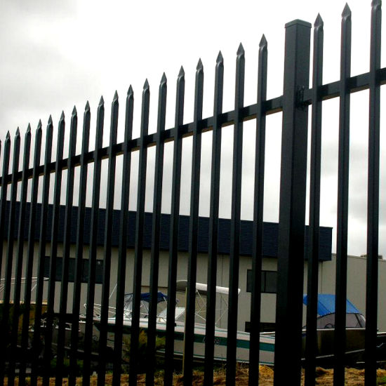 Famebest Products of Two Rails and Double Top Rails Decorative Spear Top Metal Fence, Wrought Iron Fence, Steel Fence