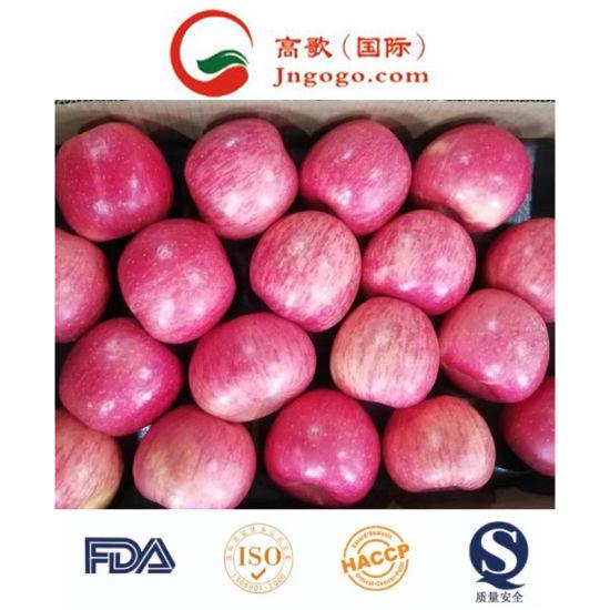 125 Fresh Red Sweet FUJI Apple