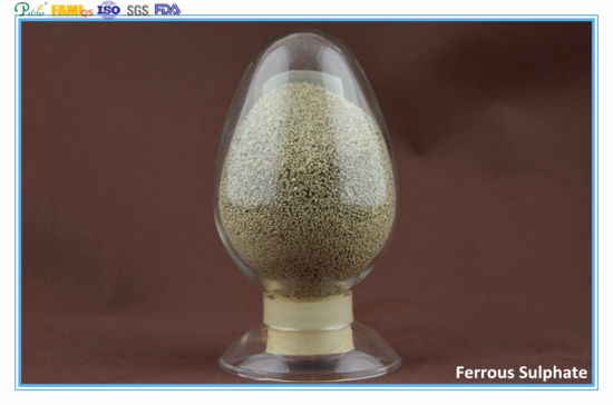 Ferrous Sulphate Monohydrate / Heptahydrate Feed Additives