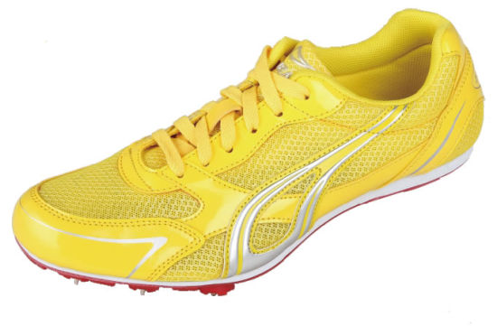 Running Spike Shoes Sport Shoes as-811