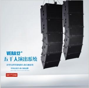"Vera12+ Single 12"" PA Speaker System Line Array Speaker"