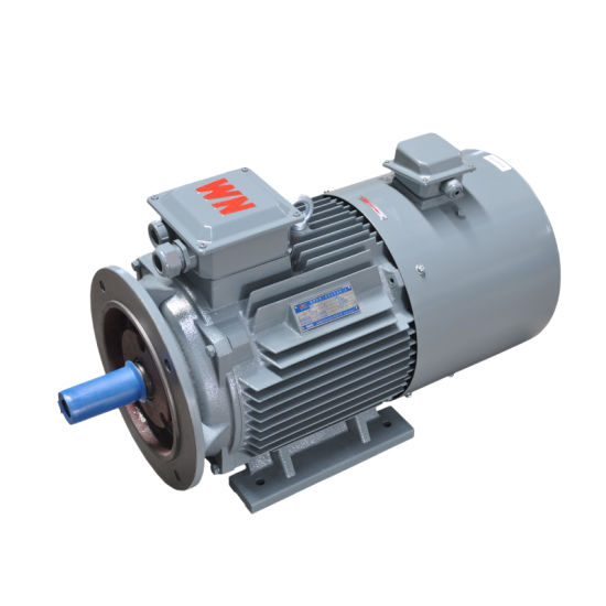 5~100Hz Variable Frequency Three Phase AC Electric Motor VFD Inverted Duty Squirrel Cage Induction Motor for Fan Pump Compressor 0.18~375kw