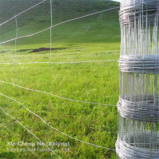 Hot Galvanized Used Chain Link Farm Fencing Mesh
