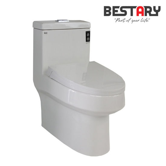 Pleasing China India Sanitary Ware Bowl Price With Soft Close Seat Squirreltailoven Fun Painted Chair Ideas Images Squirreltailovenorg