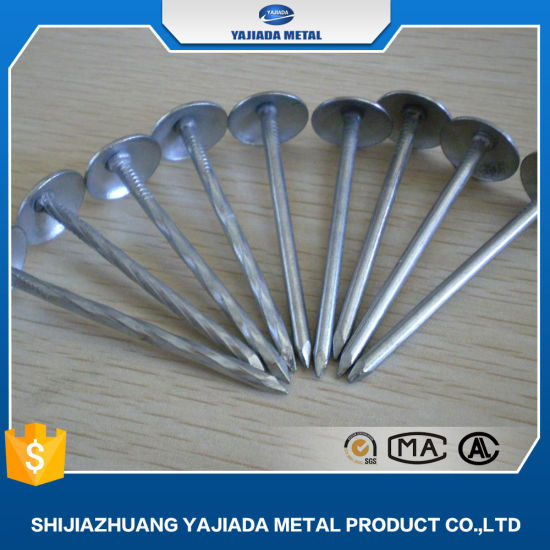 Hot Sales! 7lbs 8boxes Package High Quality Umbrella Roofing Nails to Ethiopia