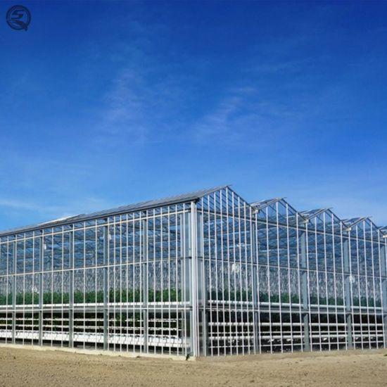 Commercial Venlo Vegetable/Flower/Garden Hydroponic Glass Green House