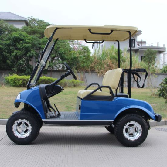 Electric Utility Car Del3022g, 2-Seater Green
